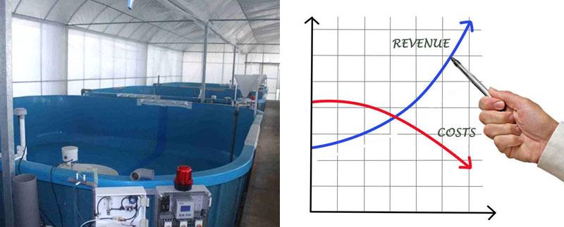 工厂化循环水养殖存在的问题